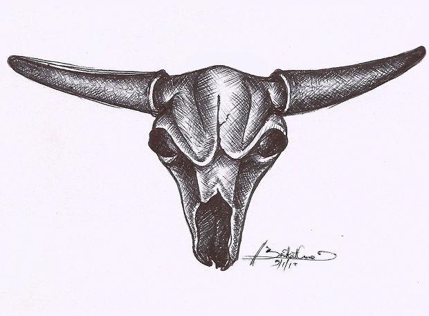 Bull Skull Pencil Sketch Drawing