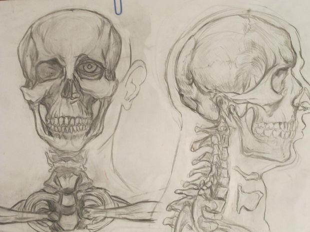 Old Human Skull Drawing