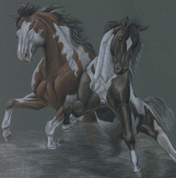 traditional wild horses drawing