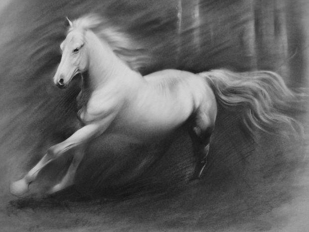 3d running horse drawing