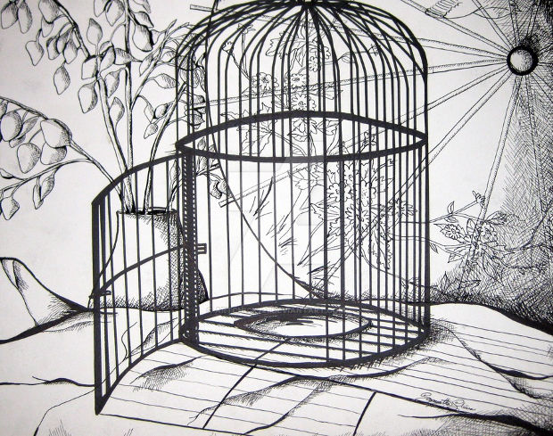bird cage pencil drawing