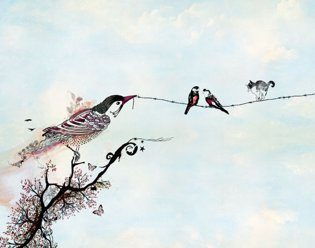 love birds on wire drawing