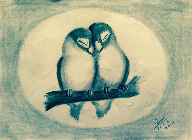 sweet love birds drawing