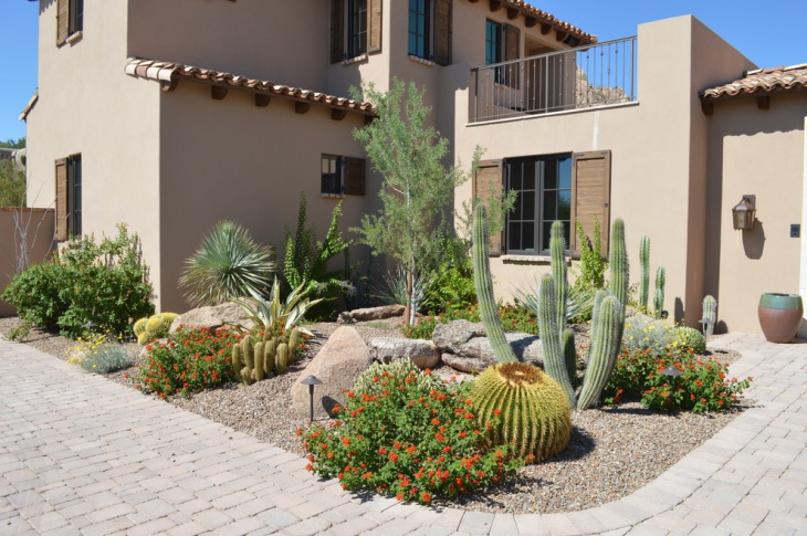 16 cactus garden designs ideas design trends premium for Cactus garden designs