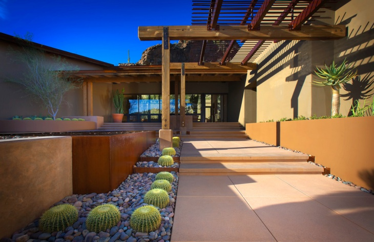cactus landscaping idea