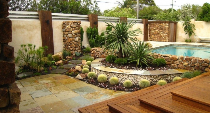 Best Cactus Garden Designs