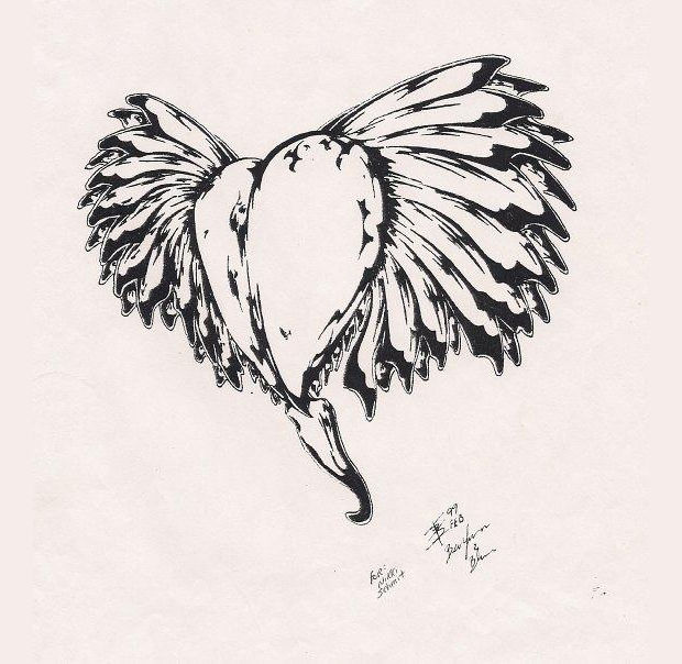 heart with wings tattoo drawing
