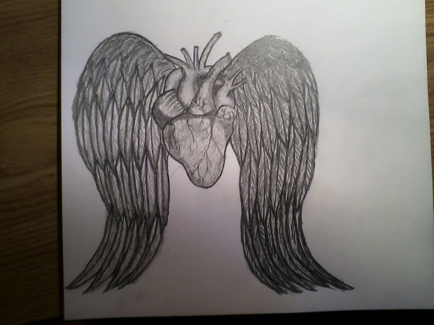heart with angel wings drawing