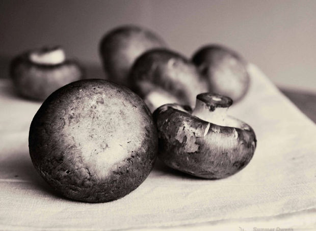 black and white food still life photography