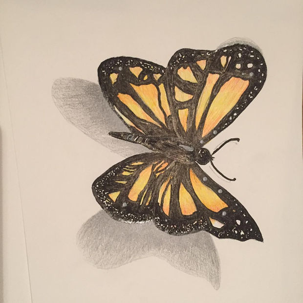 black and yellow 3d butterfly drawing