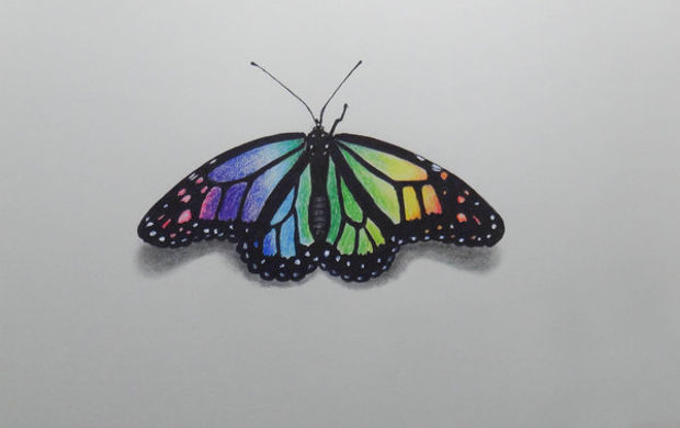 small simple butterfly drawing