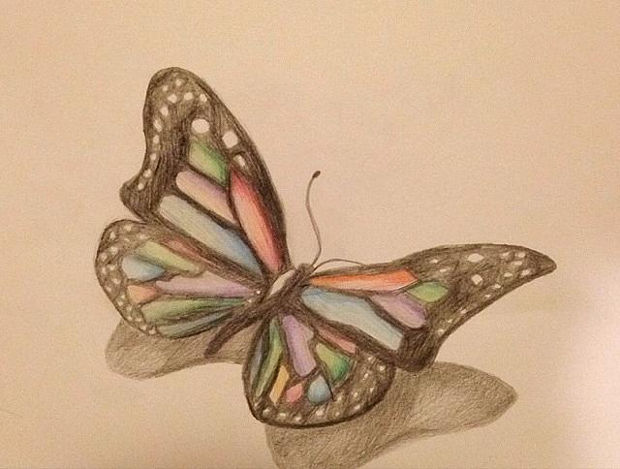 3d butterfly colored pencil drawing