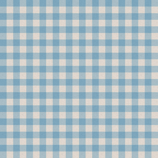 blue and white table cloth texture