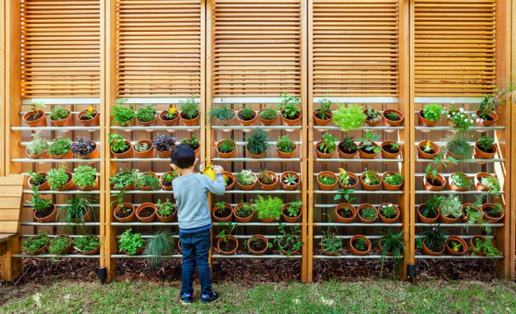 Creative Vertical Garden Design