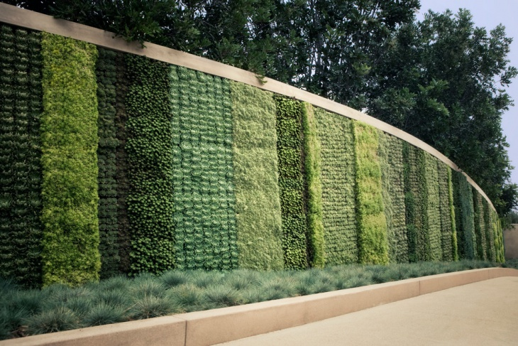 Amazing Vertical Wall Garden Design