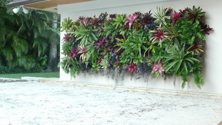 Tropical Vertical Garden Design