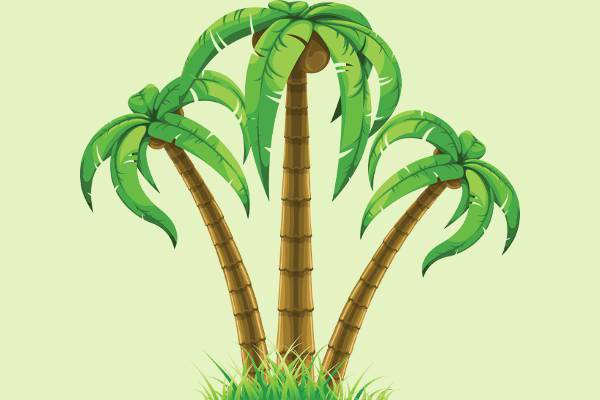nature palm tree clipart