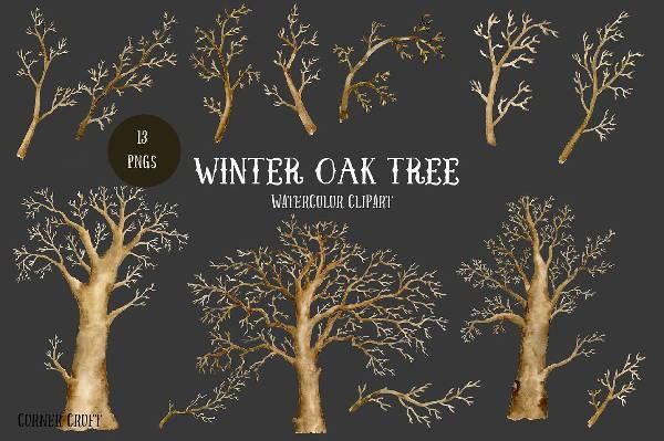 winter oak tree watercolor clipart