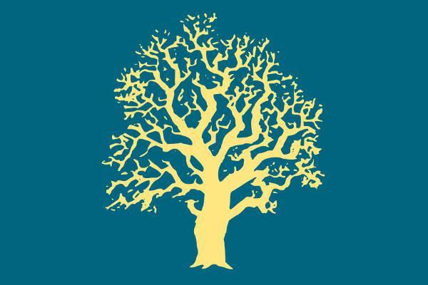forest oak tree clipart
