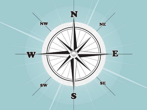 style compass rose vector