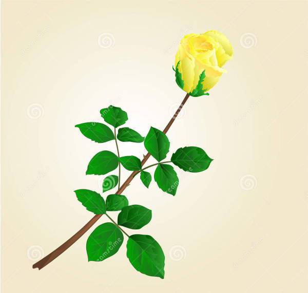Yellow Rose Bud Vector