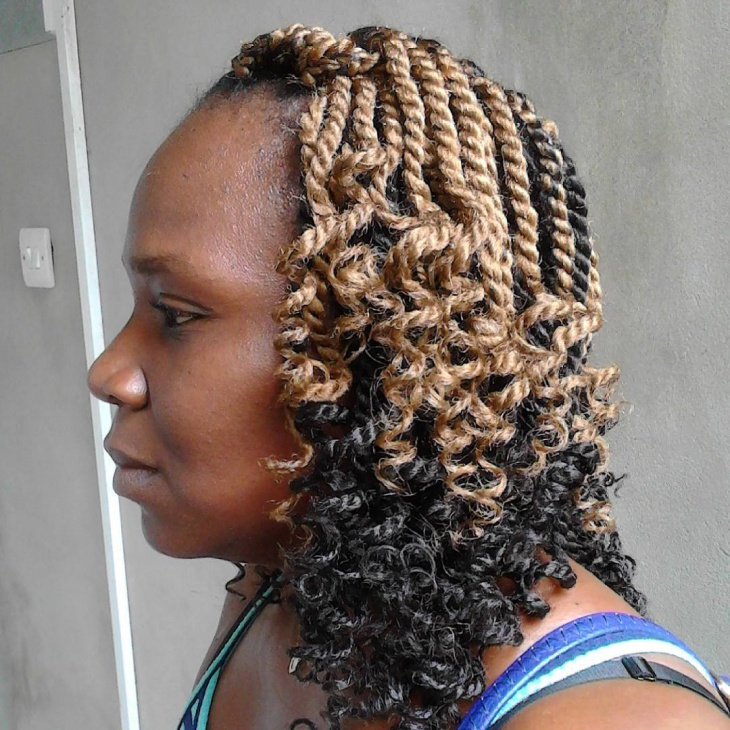Afro Twist Braid Hairstyle