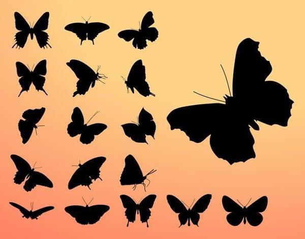 free black butterfly silhouette