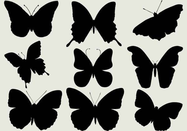 free beautiful butterfly silhouette