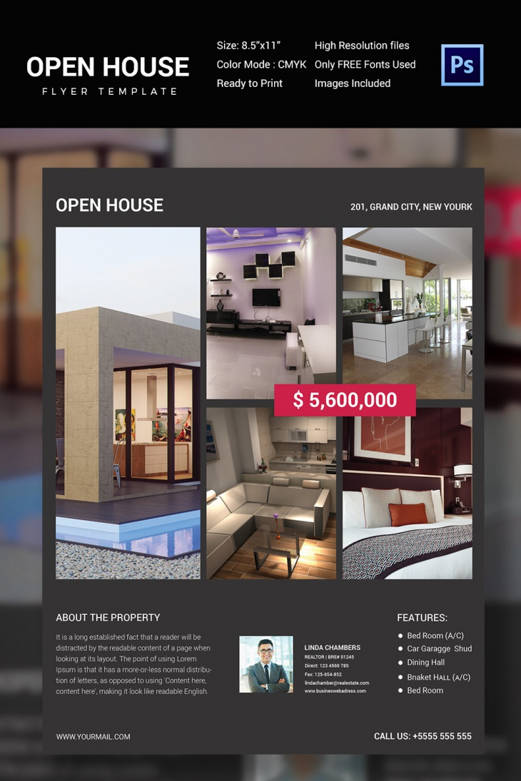 Minimalistic Open House Flyer