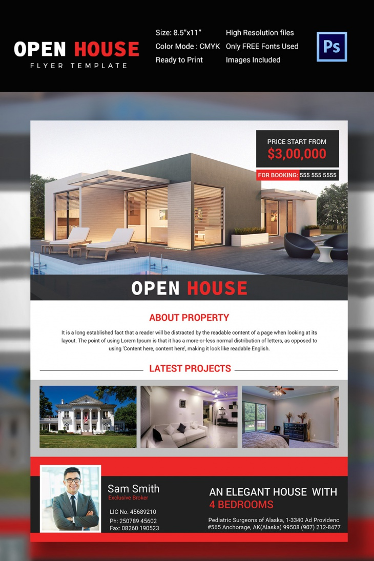 Real Estate Agencies Open House Flyer