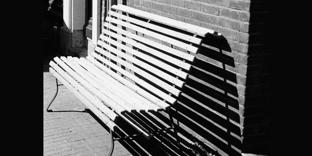 pay attention to lines shadows and shapes