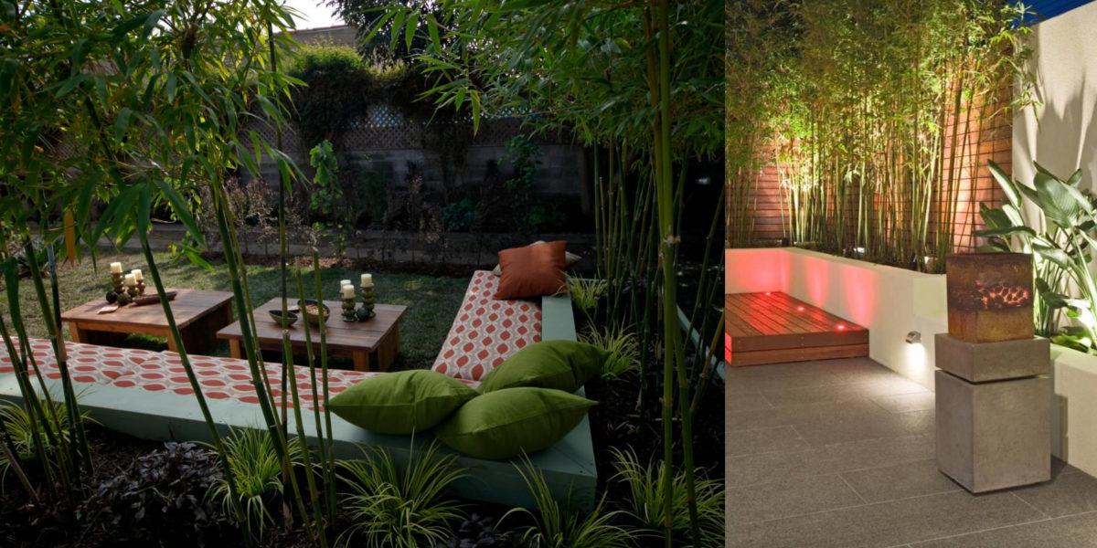 creative outdoor garden