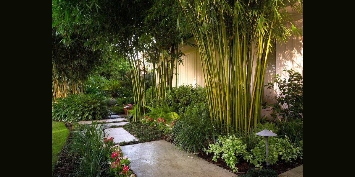 Bamboo Garden Decorating Ideas | Design Trends - Premium ...