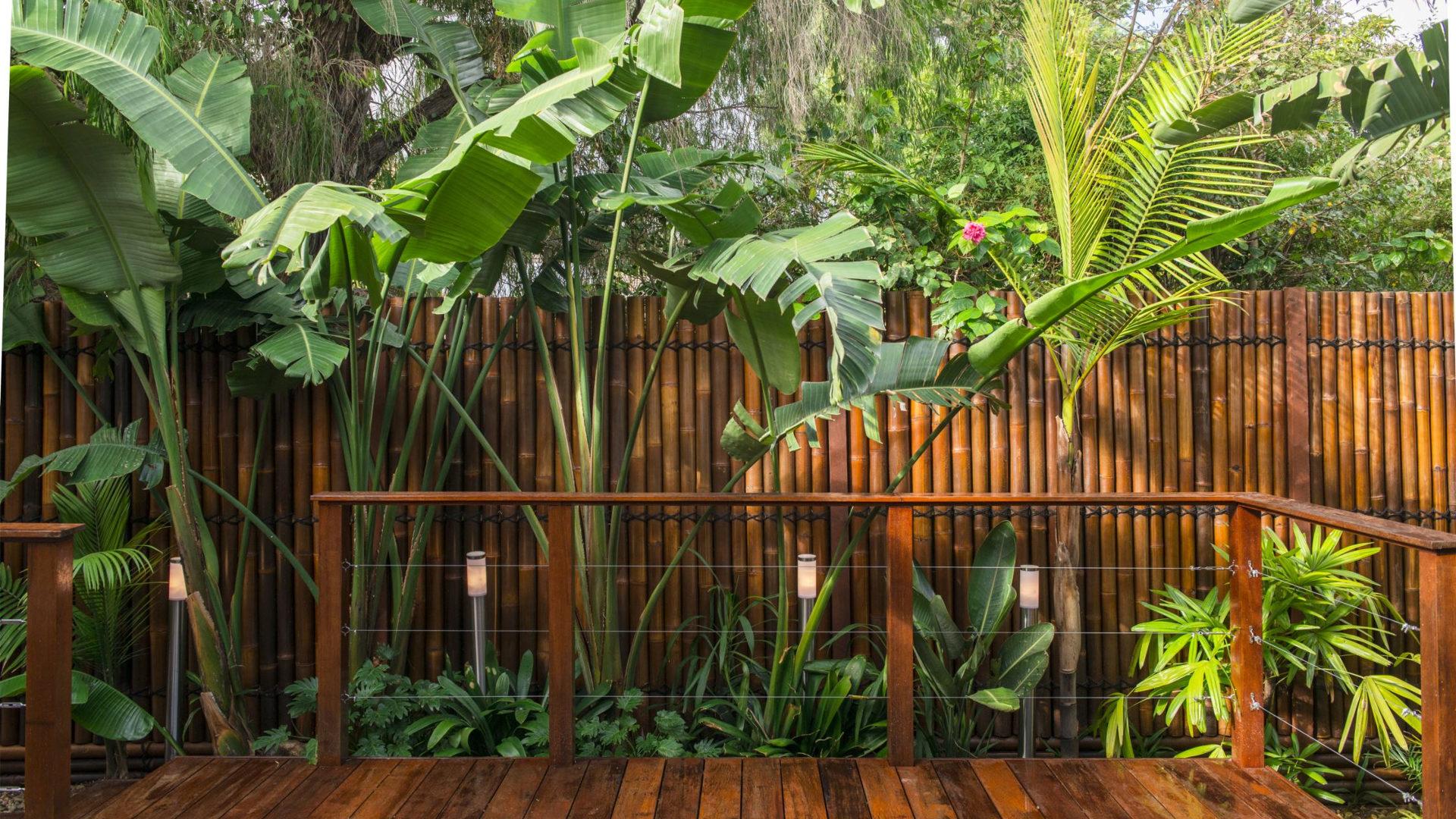 Bamboo Garden Decorating Ideas Design Trends Premium