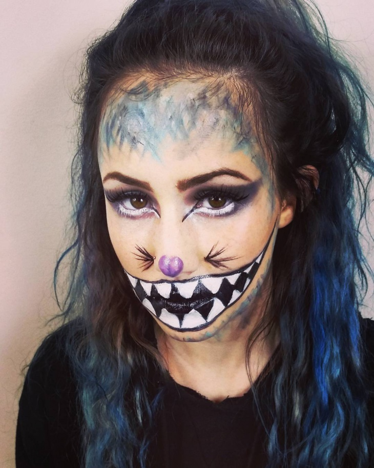 Disin Makeup: 21+ Cat Makeup Designs, Ideas