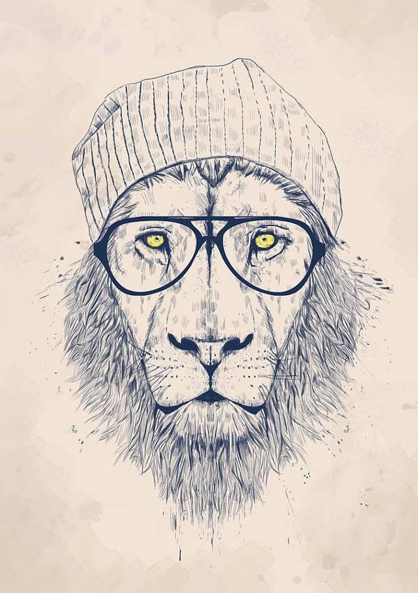 cool lion animal drawing