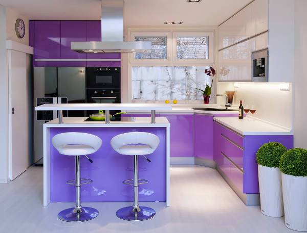 small modern kitchen with purple cabinets