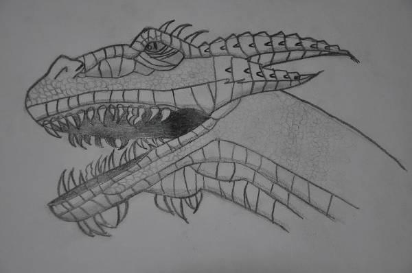 Dragon Head Pencil Drawing