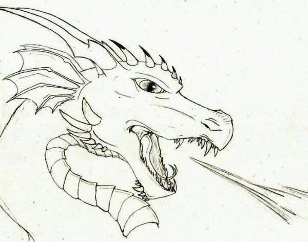 Fire Dragon Head Drawing