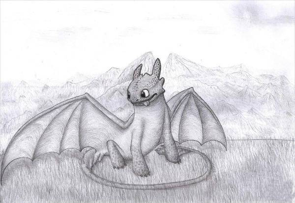 beautiful toothless dragon drawing