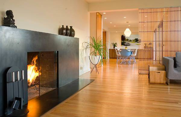 modern fireplace door design