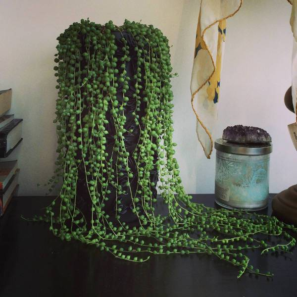string of pearls1