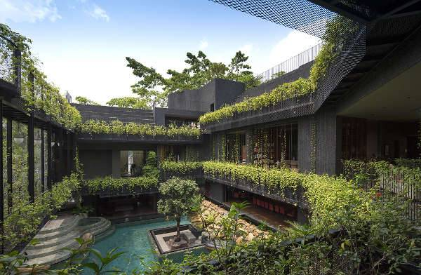 A Sanctuary for Nature and Living Spaces