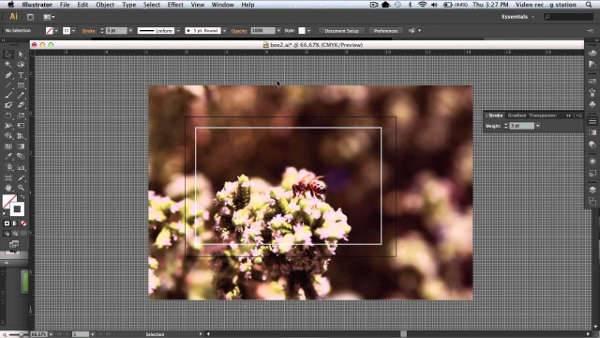 crop imagess