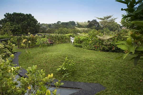 Lustrous Roof Garden