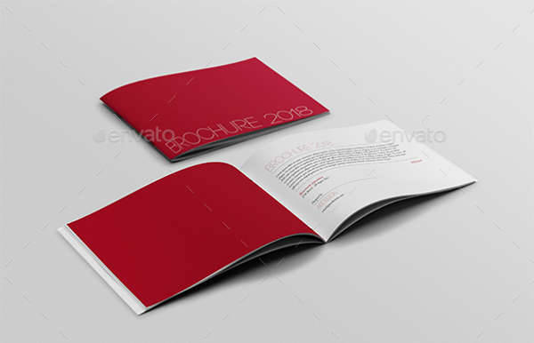 a 5 brochure
