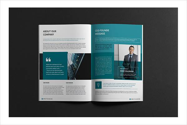 Business Company Portfolio Brochure
