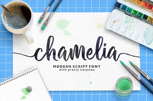 Calligraphy Cursive Script Font