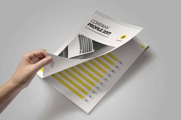 Clean Marketing Company Brochure
