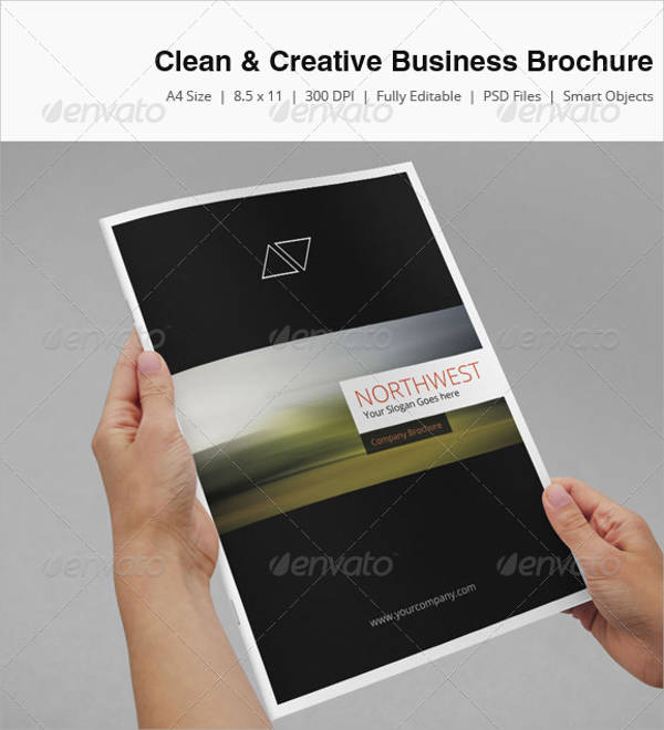 Clean and Creative Business Brochure